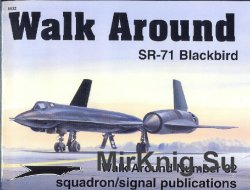 SR-71 Blackbird (Walk Around 5532)
