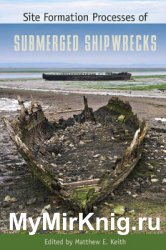 Site Formation Processes of Submerged Shipwrecks